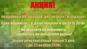 Акция на подробные VIP обзоры